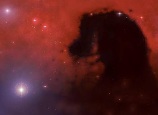 Wall Art - Photograph - Horsehead Nebula by Mark Garlick/science Photo Library