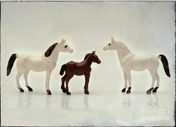 Wall Art - Photograph - Horses Figurine by Bernard Jaubert