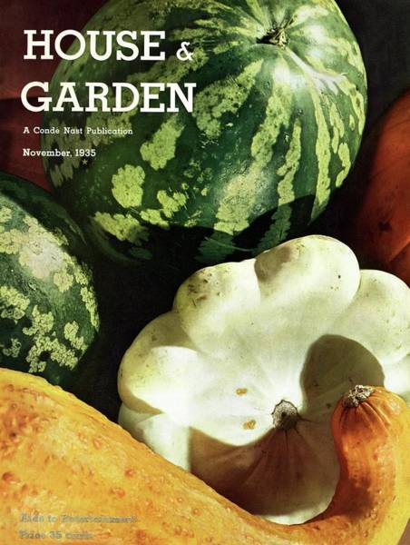 Vegetables Photograph - House And Garden Cover by Anton Bruehl