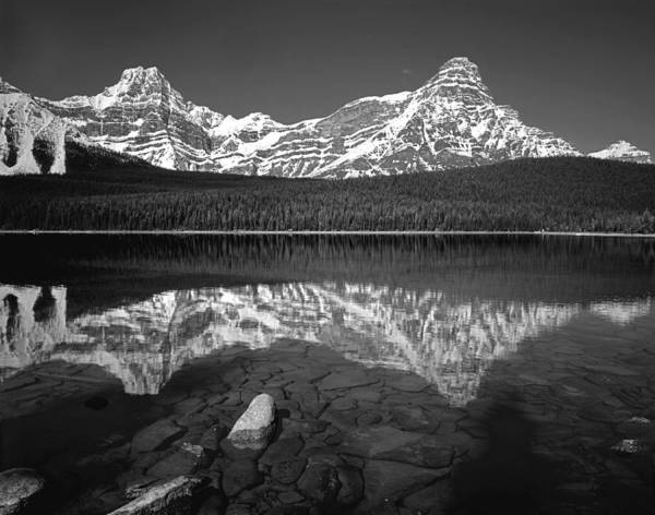 Photograph - 1m3643-bw-howse Peak Mt. Chephren Reflect  by Ed  Cooper Photography