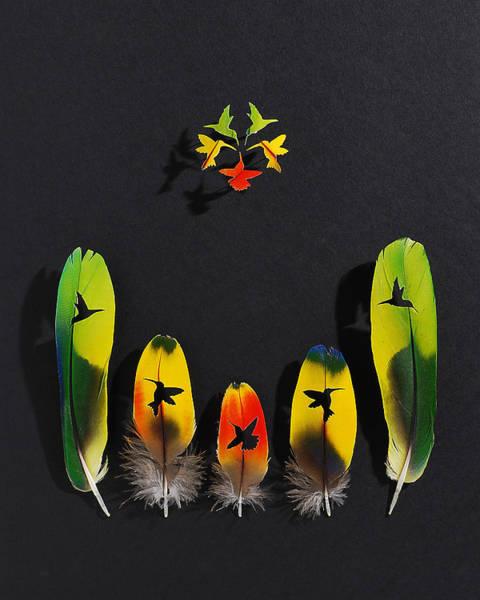 Wall Art - Mixed Media - Hummingbird Flower 2 by Chris Maynard
