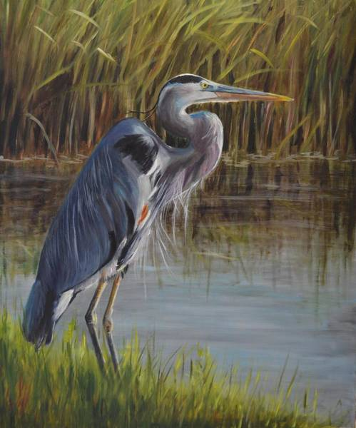 Wall Art - Painting - Hunting Heron by Karen Langley