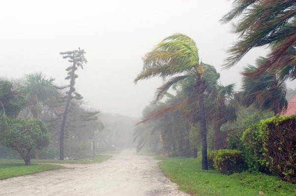 Wall Art - Photograph - Hurricane Jeanne by Jim Reed/science Photo Library