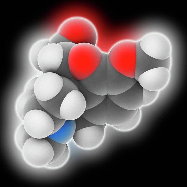 Er Photograph - Hydrocodone Drug Molecule by Laguna Design