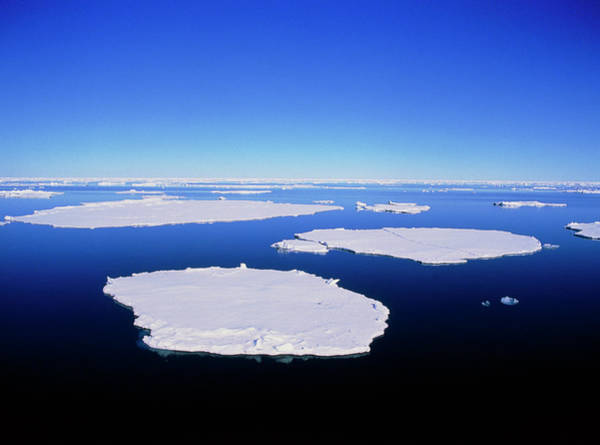 Ice Floe Photograph - Ice Floes Off The Coast Of Spitsbergen by Simon Fraser/science Photo Library