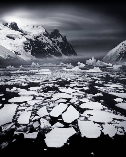 Umwelt Photograph - Ice Shoals Near The Antarctic Circle by Per-Andre Hoffmann
