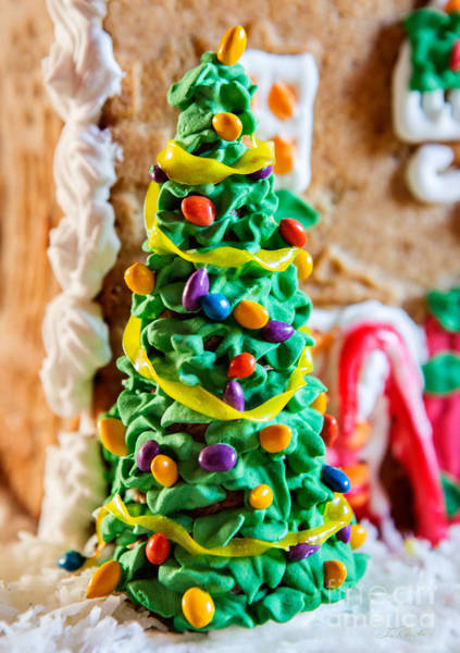 Wall Art - Photograph - Icing Christmas Tree by Iris Richardson