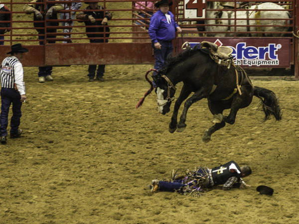Prca Photograph - I'm Flying by Jason Smith