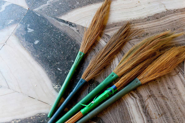Broom Photograph - India, Jammu & Kashmir, Ladakh, Leh by Ellen Clark