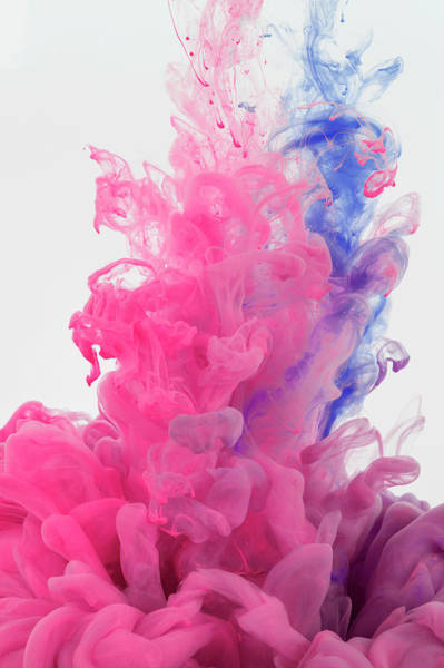 Wall Art - Photograph - Ink In Water On White Background by Yagi Studio