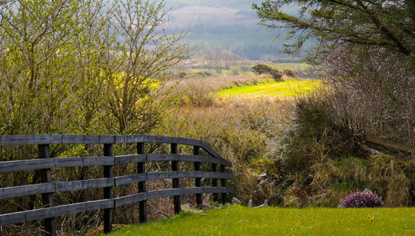 Photograph - Irish Countryside In Spring by James Truett