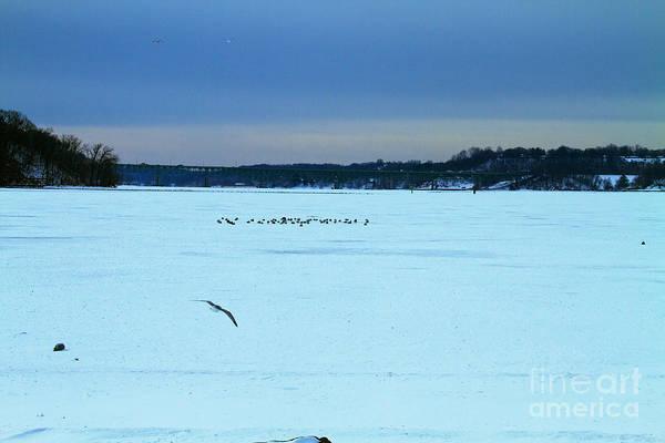 Photograph - Irondequoit Bay by William Norton