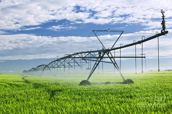 Farm Equipment Photograph - Irrigation Equipment On Farm Field by Elena Elisseeva