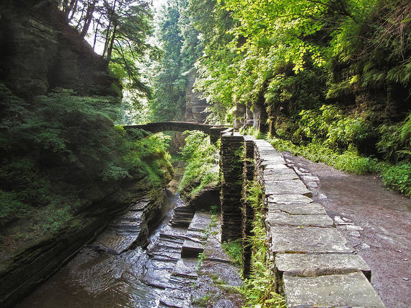 Photograph - Ithaca Gorge by Jessica Jenney