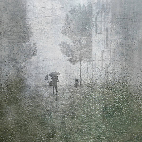 Wall Art - Photograph - It's Raining by Anette Ohlendorf