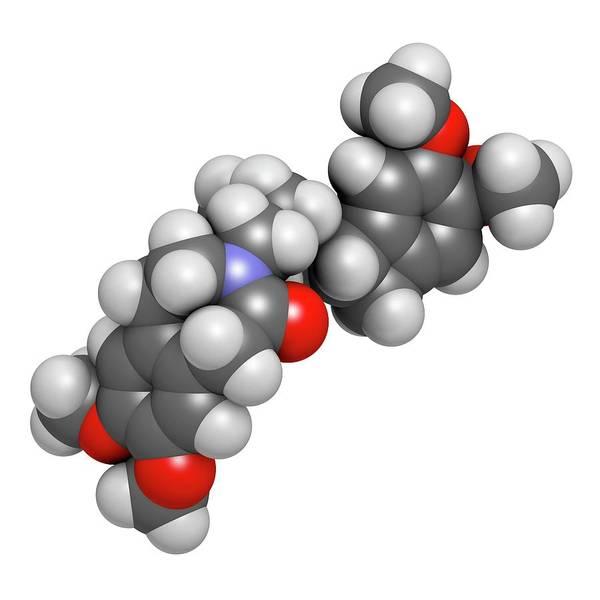 Molecular Wall Art - Photograph - Ivabradine Angina Pectoris Drug Molecule by Molekuul/science Photo Library