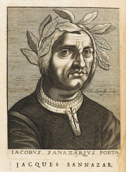 Arcadia Drawing - Jacopo Sannazaro  Italian Writer, Known by Mary Evans Picture Library