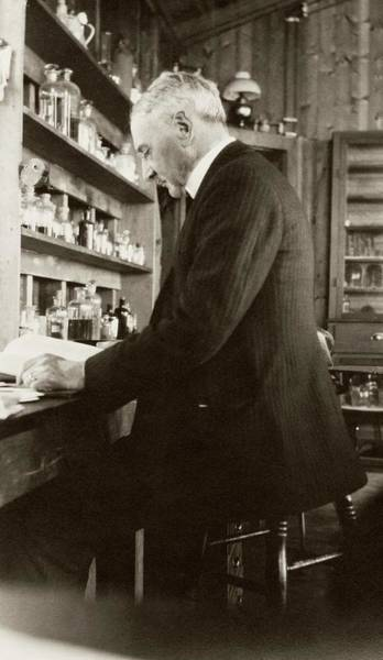 Jacques Photograph - Jacques Loeb by American Philosophical Society