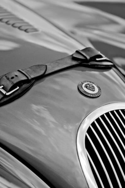 Photograph - Jaguar Hood Emblem by Jill Reger
