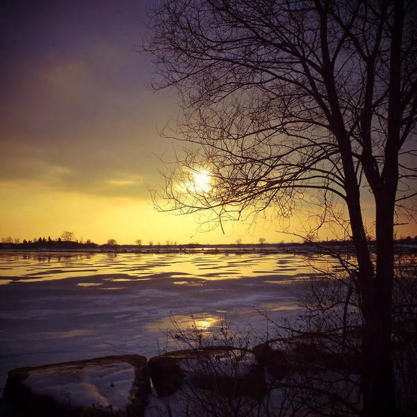 Photograph - January Dusk by Natasha Marco