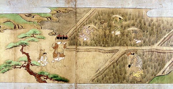 Feudal Japan Wall Art - Painting - Japan Rice Farming by Granger