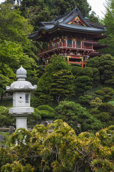Photograph - Japanese Tea Garden Golden Gate Park by Adam Romanowicz