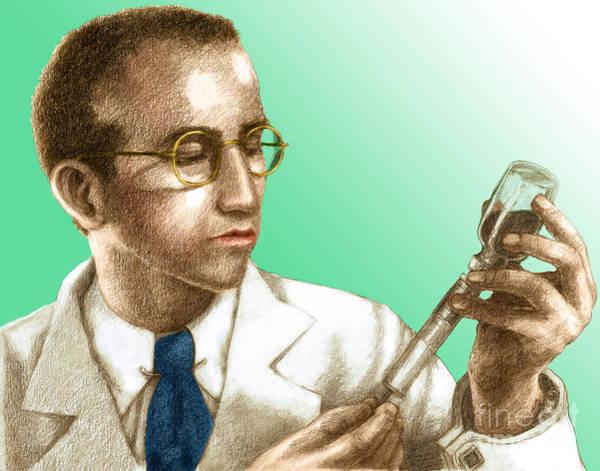Photograph - Jonas Salk, Microbiologist by Spencer Sutton
