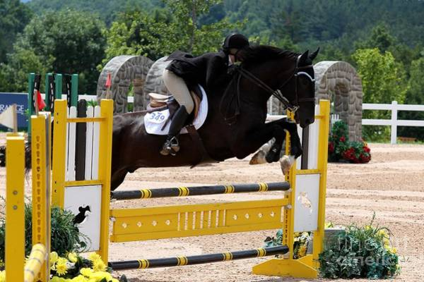 Photograph - Jumper108 by Janice Byer