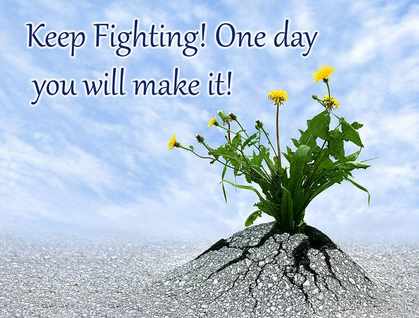 Photograph - Keep Fighting by Dreamland Media
