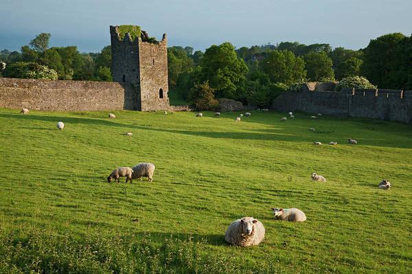 St Augustine Photograph - Kells Priory  Count Kilkenny, Ireland by Carl Bruemmer