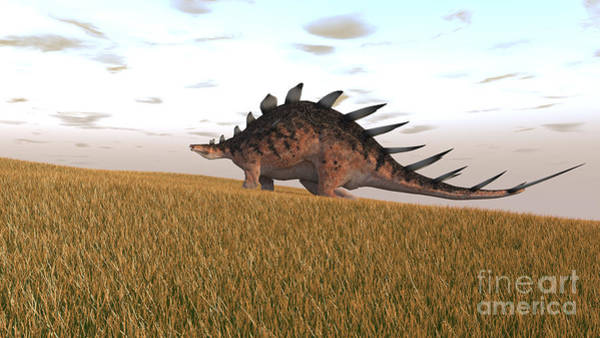 Photograph - Kentrosaurus Walking Across A Grassy by Kostyantyn Ivanyshen