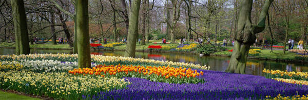 Keukenhof Wall Art - Photograph - Keukenhof Garden Lisse The Netherlands by Panoramic Images