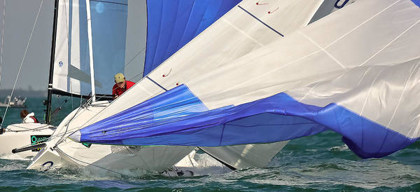 Photograph - Key West Spinnakers by Steven Lapkin