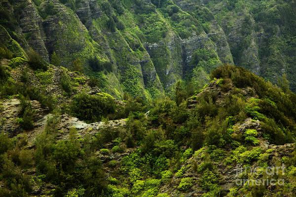 Photograph - Koolau Ridges by Charmian Vistaunet