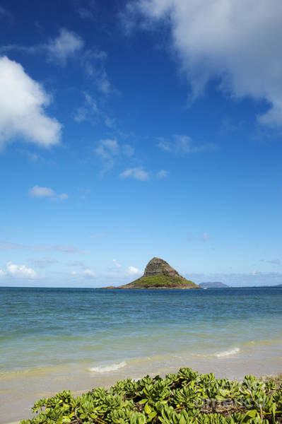 Photograph - Kualoa Beach Park by Charmian Vistaunet