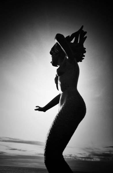 Photograph - La Sirene by Natasha Marco