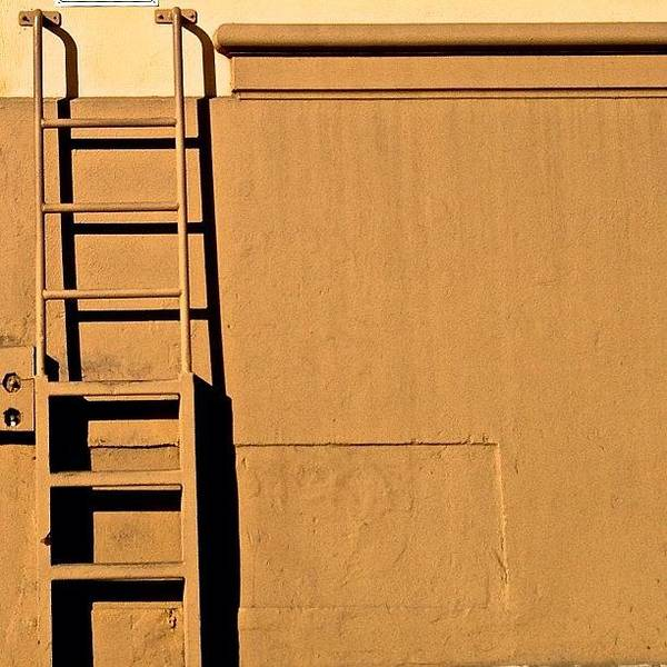 Wall Art - Photograph - Ladder by Julie Gebhardt