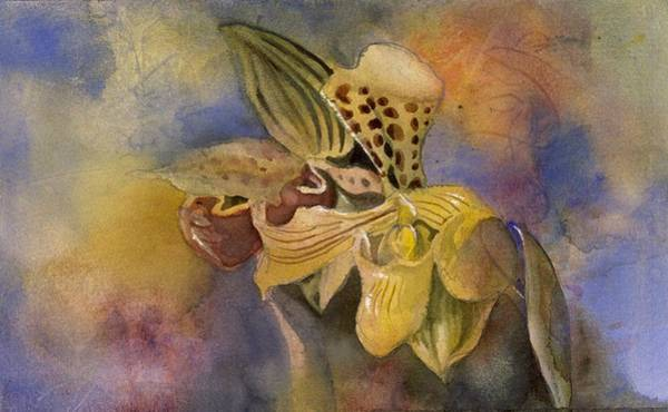 Painting - Ladyslipper Orchid With Blues by Alfred Ng