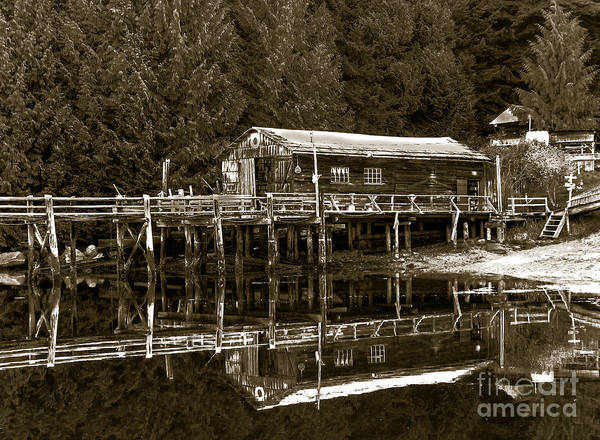Queen Charlotte Sound Wall Art - Photograph - Lagoon Cove by Robert Bales
