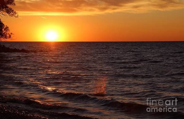 Art Print featuring the photograph Lake Ontario Sunset by Jemmy Archer