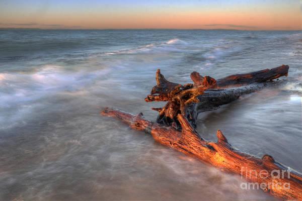 Upper Peninsula Wall Art - Photograph - Lake Superior Driftwood by Twenty Two North Photography