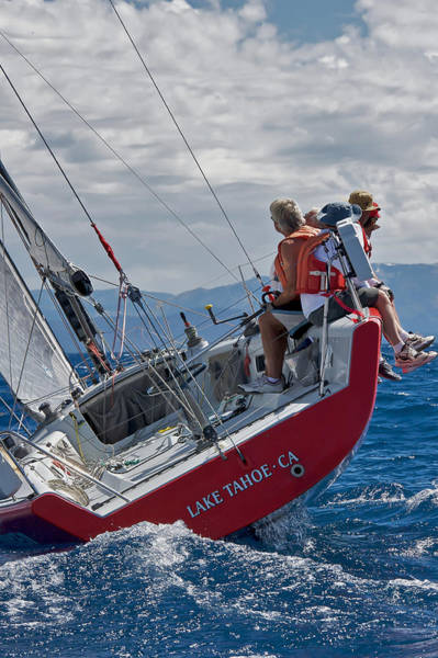 Photograph - Lake Tahoe Sailing by Steven Lapkin
