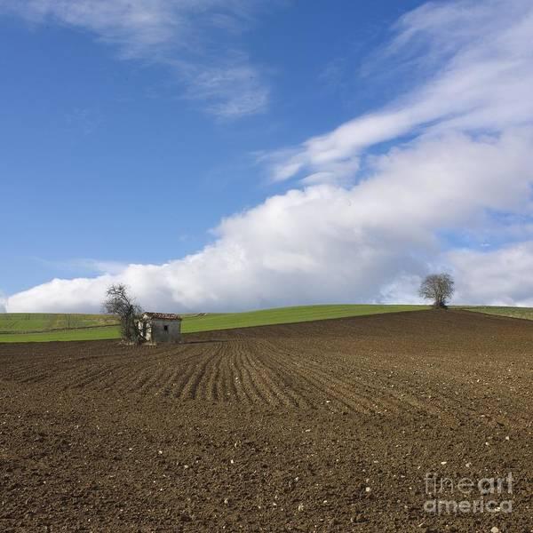 Agrarian Wall Art - Photograph - Landscape In France by Bernard Jaubert