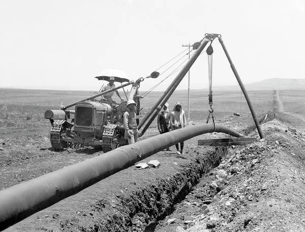 Jerusalem Photograph - Laying Oil Pipeline In Palestine by Library Of Congress/science Photo Library