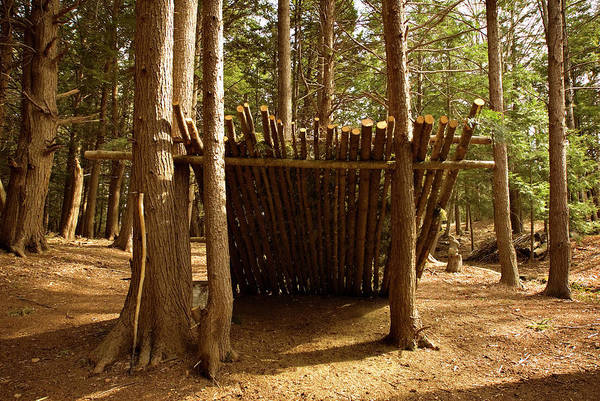 Lean-tos Photograph - Leanto In The Woods by Peter Dennen