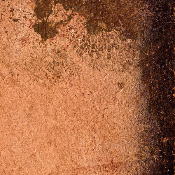 Wall Art - Photograph - Leather Texture Background by Donald  Erickson
