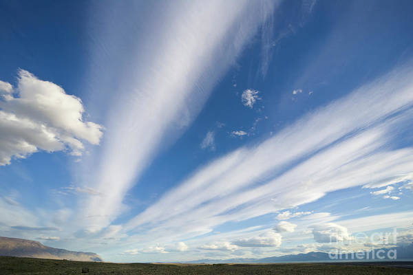 Photograph - Lenticular And Cumulus Clouds Patagonia by Yva Momatiuk John Eastcott