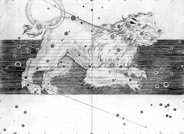 First Star Photograph - Leo Constellation by Royal Astronomical Society/science Photo Library