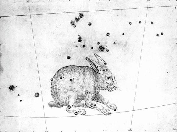 First Star Photograph - Lepus Constellation by Royal Astronomical Society/science Photo Library