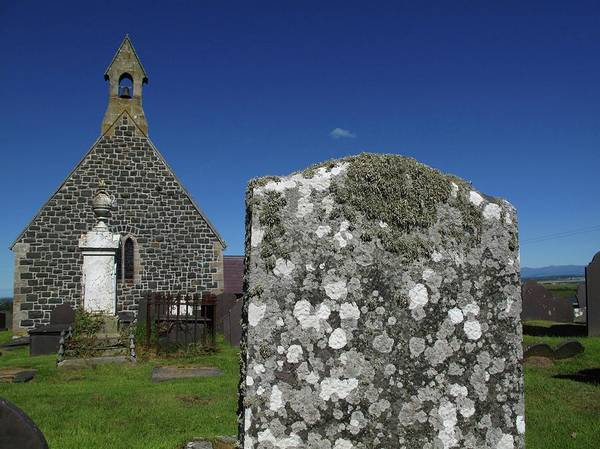 Pollution Photograph - Lichen On Gravestone In Unpolluted Air by Cordelia Molloy